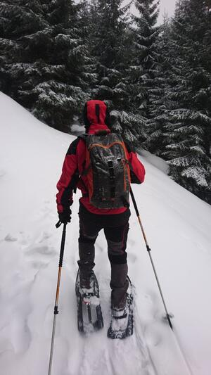 snowshoeing romania