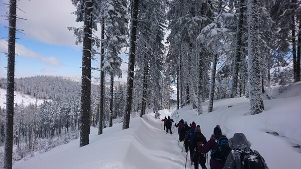 Snow-shoeing in Romania
