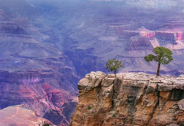 Grand Canyon Add 1