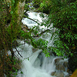 Waterfall_in_rainforest_Peru