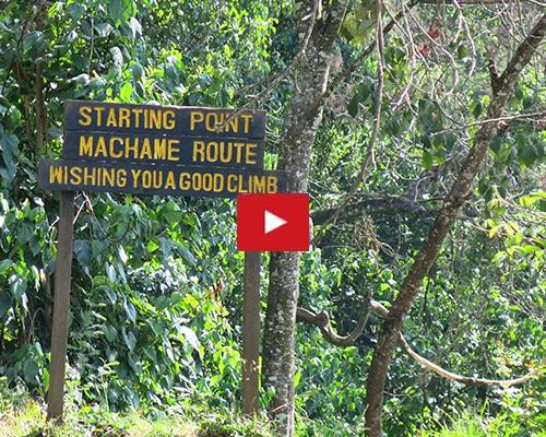 Machame_Route_Kilimanjaro-1.jpg
