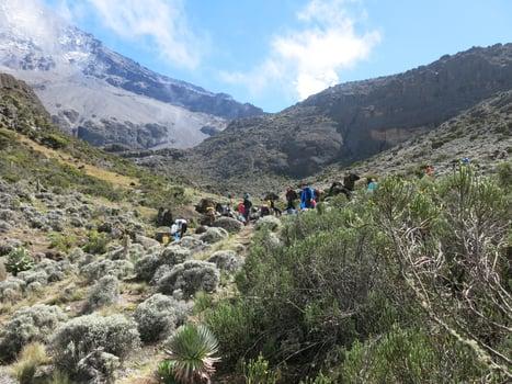 Kilimanjaro terrain