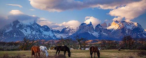 Patagonia_Vista.jpg