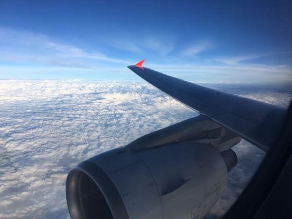 Plane above the jungle