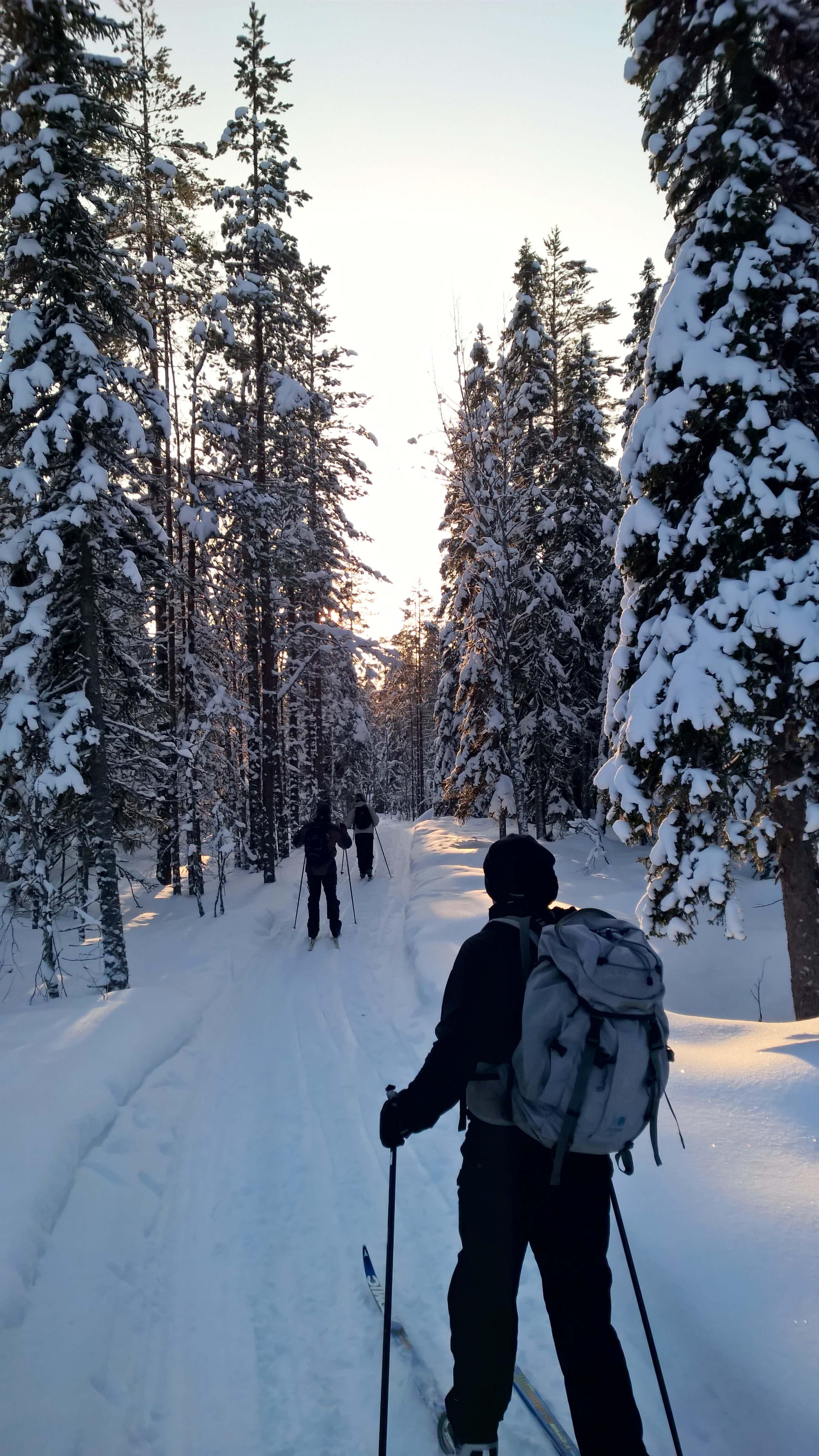Ski tours 2016 (5).jpg