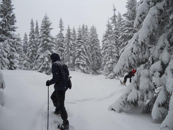 Snowshoeing in Romania