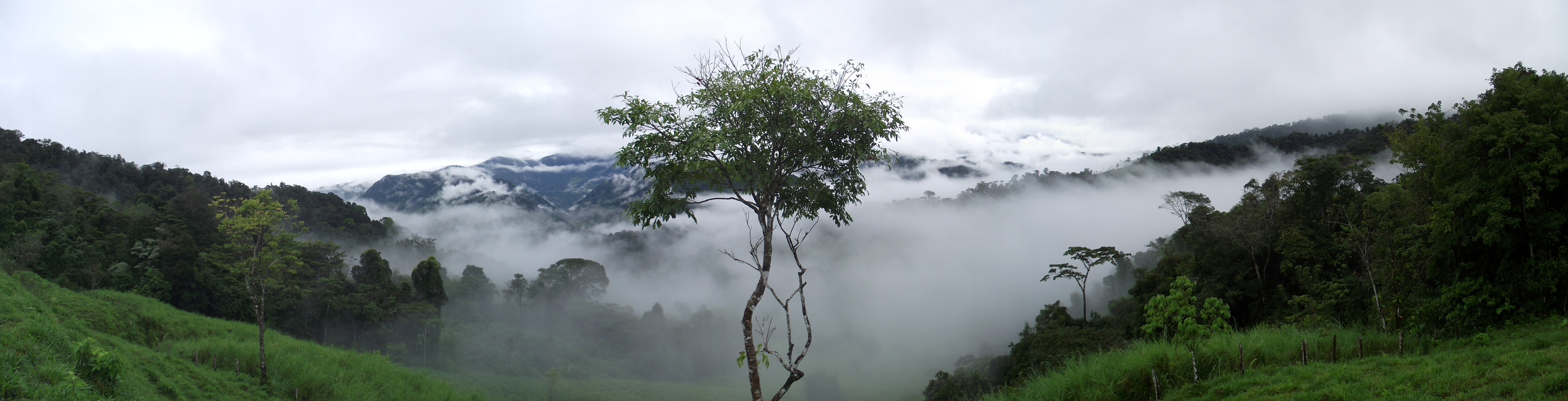 rainforest costa rica vacation coast to coast adventures